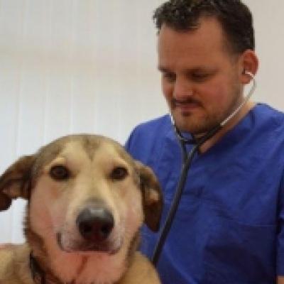 Dr. Robert Höpfner mit seinem Hund Tommi
